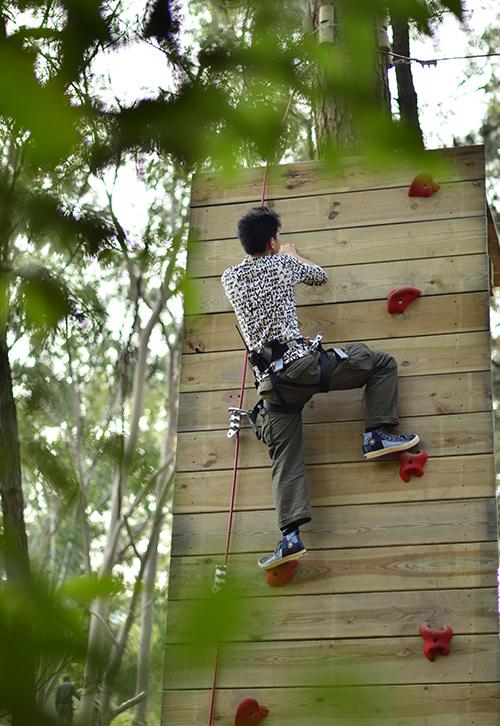 Harness adventures courses